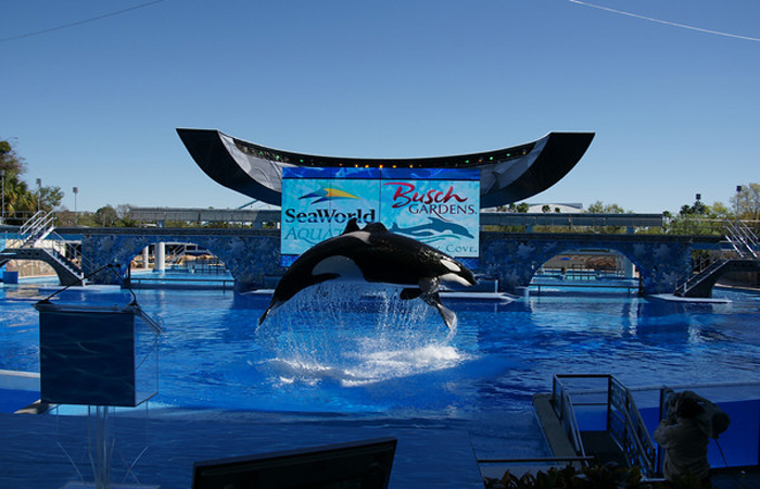 SeaWorld Headquarters Photo