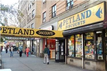 Petland Discounts Headquarters